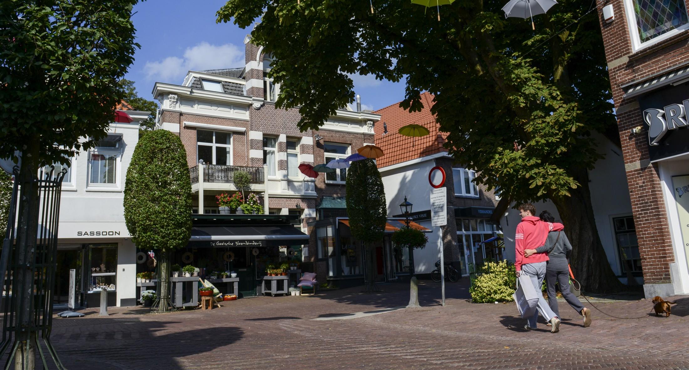 Straat in Baarn