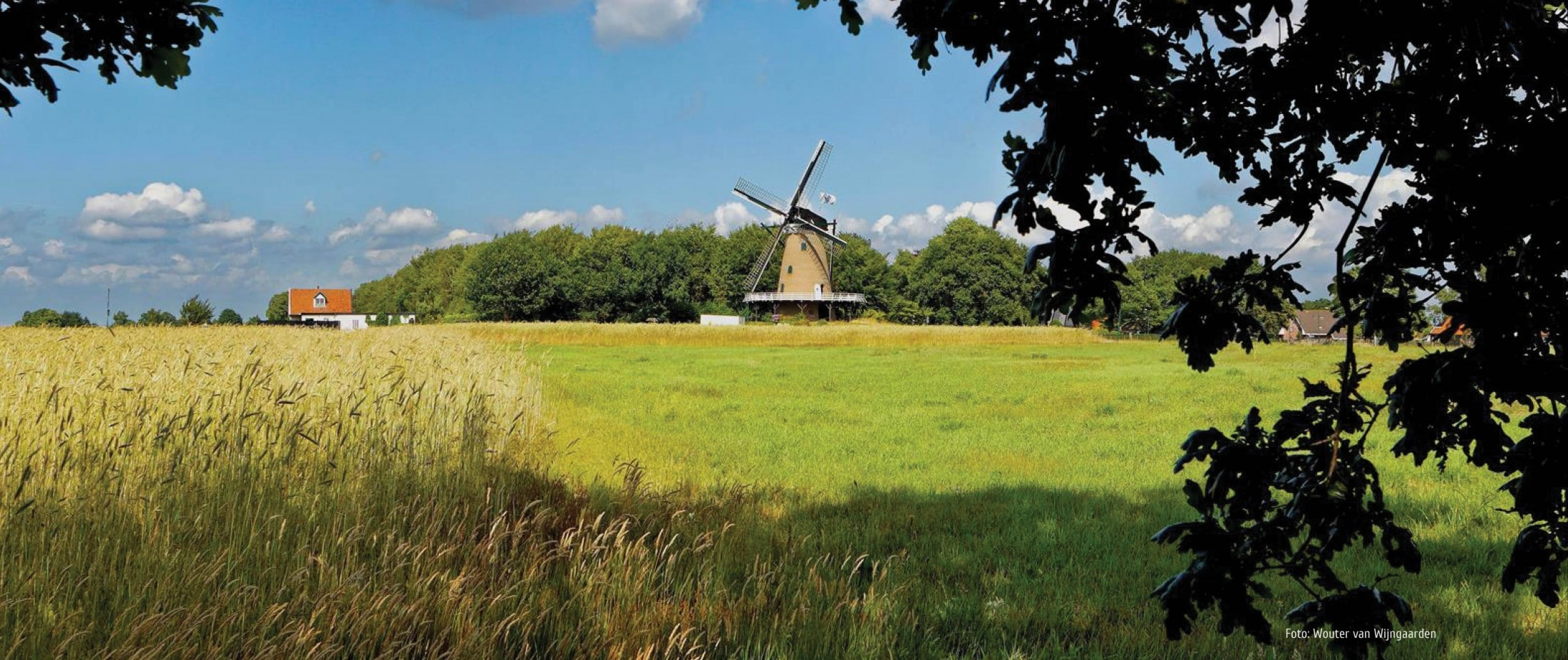 Molen in Soest